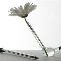 Tolltartó vagy váza?