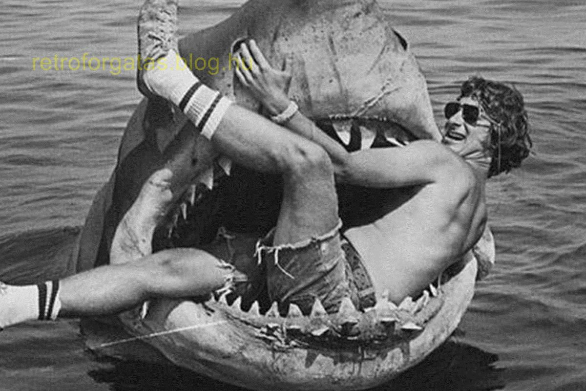 jaws-behind-the-scenes-black-and-white-jaws-shark-steven-spielberg-favim_com-49410_1.jpg