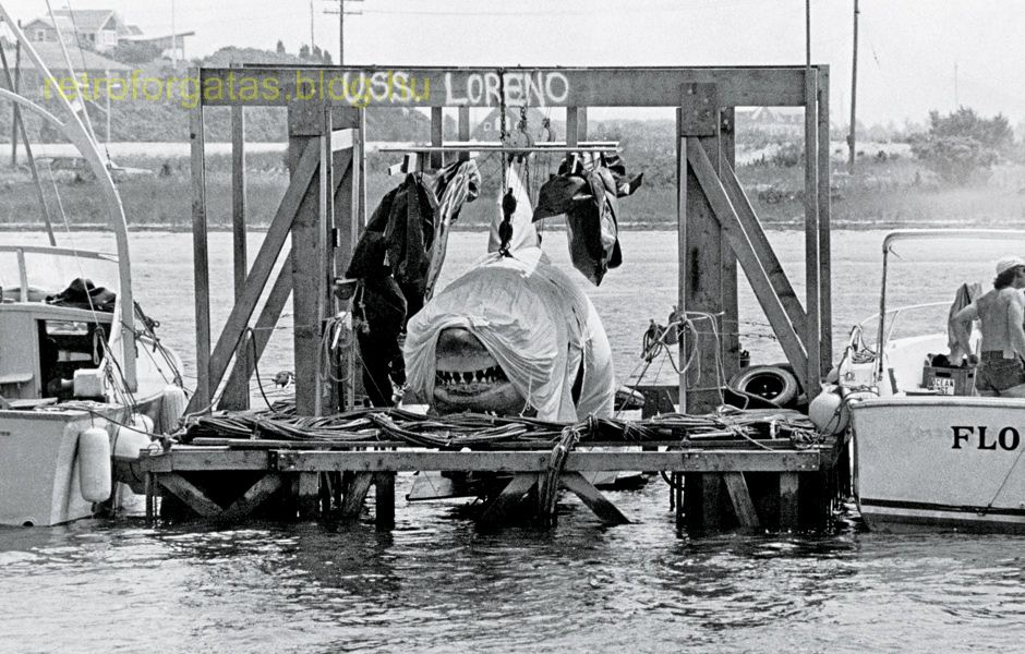 wonderful_jaws_behind-the-scenes_photos_10.jpg