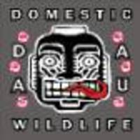 Daau - Domestic Wildlife