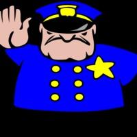 Wellness rendőrség