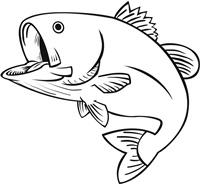 FISH-JUMP-3.jpg