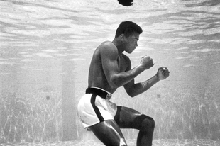 """Ki volt Muhammad Ali, és mi tette őt """"A Legnagyobb""""-á? 1. rész"""