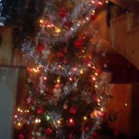 Kész a karácsony fa!  :)