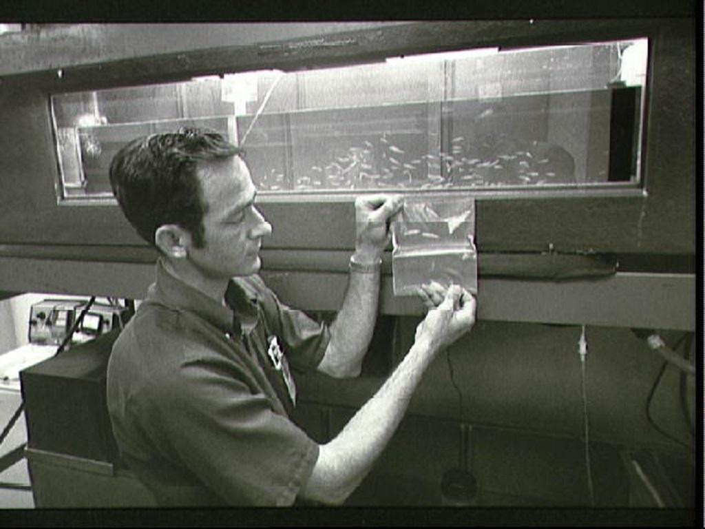 1973_skylab-3.jpg