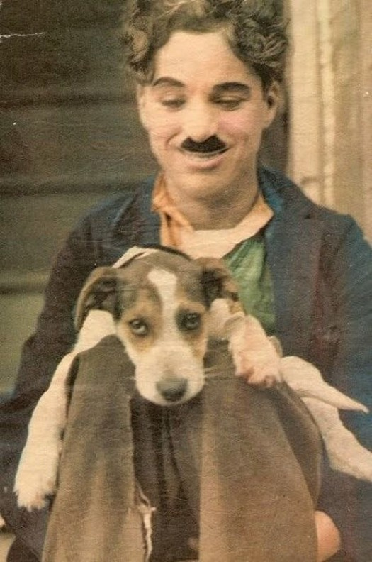 interesting_colorized_photos_of_charlie_chaplin_in_the_1910s-30s_282_29.jpg