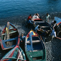 Madeira - 1984