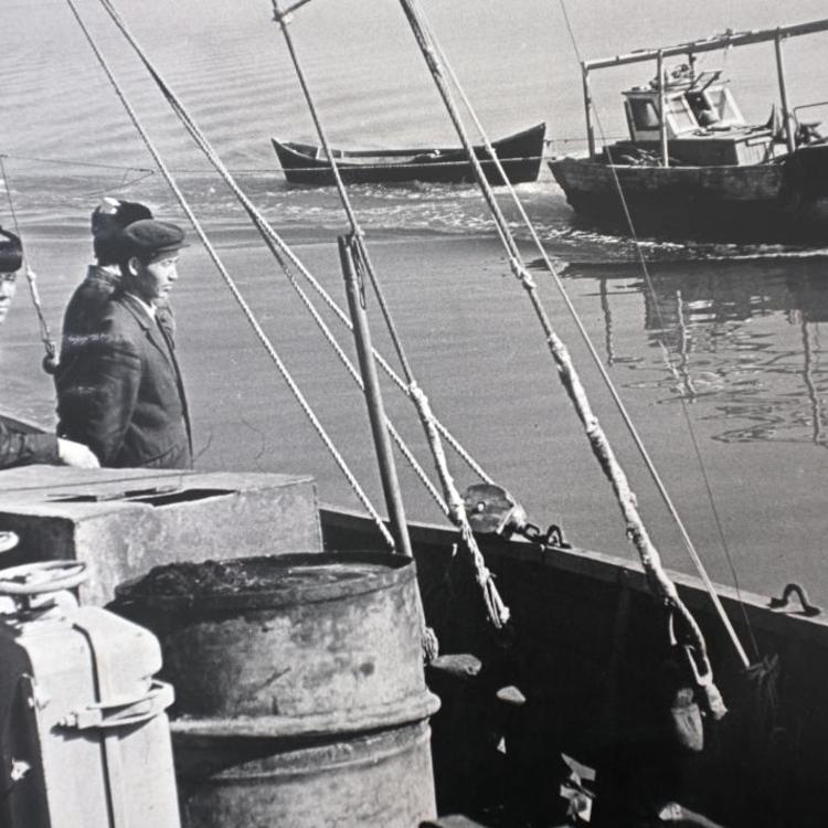 Az Aral-tó esete