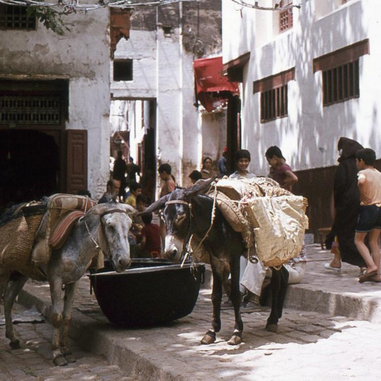 Fez, Marokkó - 1975