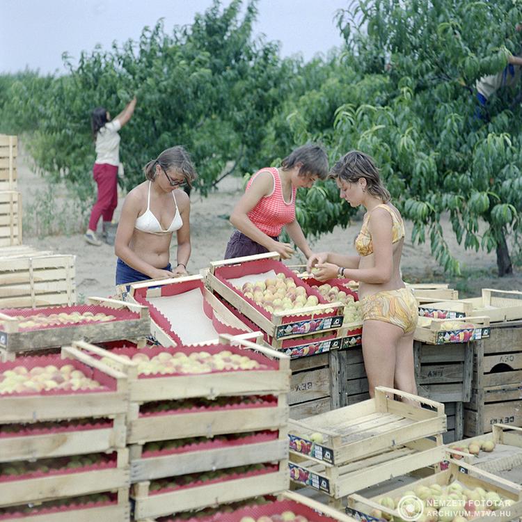 Színes mindennapok - 1973