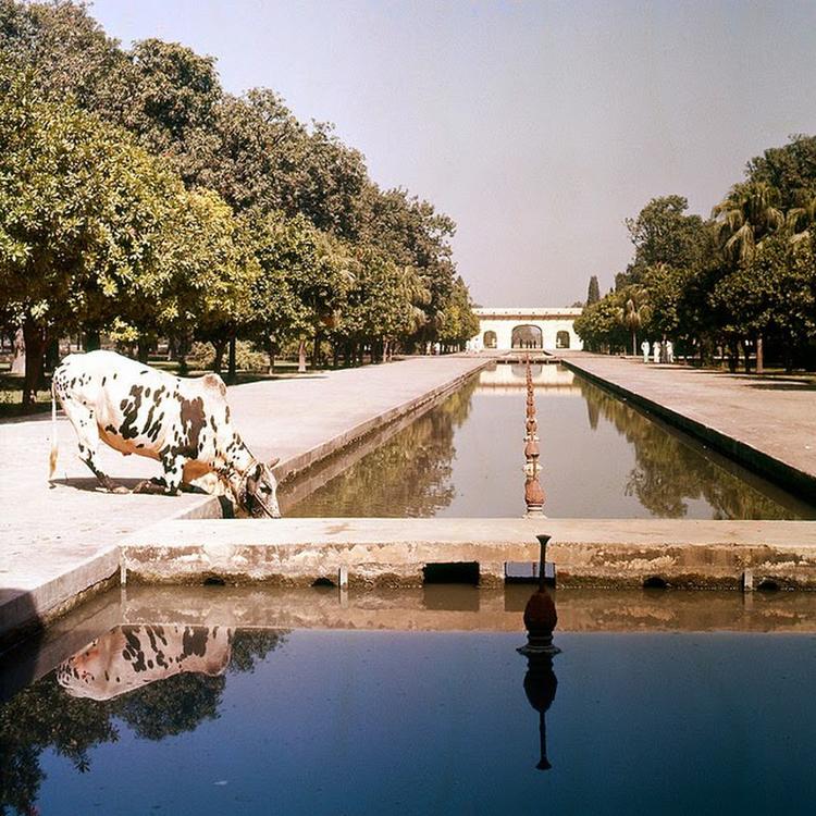 Pakisztán - 1957