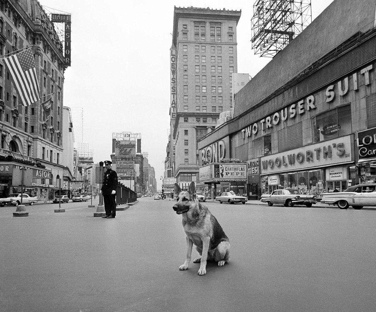 24_polgari_vedelmi_gyakorlat_miatt_elneptelenedett_times_square_new_yorkban.jpg