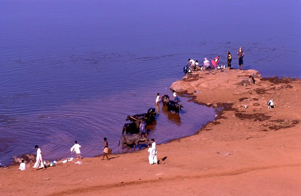 Krisna-folyó. A hatalmas folyam szinte teljesen átszeli a szubkontinenst és a magasabb fennsíkok egyikén ered. Ezen fennsíkokra jellemző hogy nem az Indiában máshol megszokott buja növényzet és állatvilág határozza meg, hanem a kimondottan száraz, szinte sivatagos éghajlat. A képen vízhordó asszonyok és közelükben bivalyt csutakoló férfi. Hmm, higiénikus...