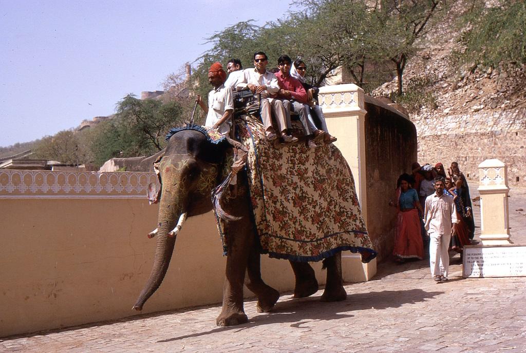 Elefánton az Ámbér-erődben (Amber Palace) Dzsaipur közelében
