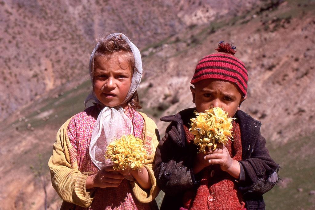 Virágárus gyerekek Bayburt közelében