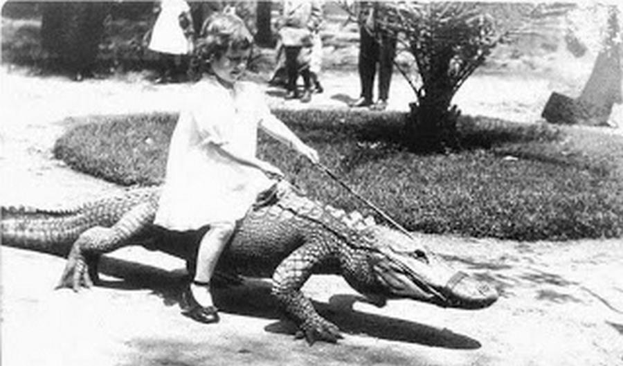 los_angeles_alligator_farm_1920s_09.jpg