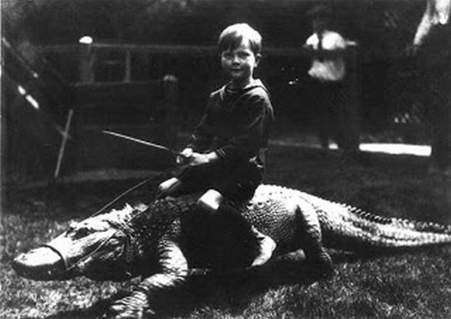 los_angeles_alligator_farm_1920s_11.jpg
