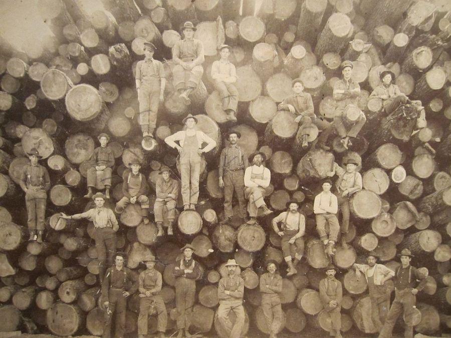 1900_amerikai_favagok.jpg