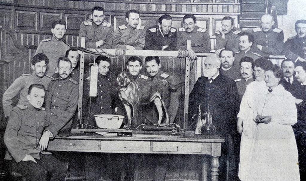 1913_pavlov_kutyaja_ivan_pavlov_es_a_felteteles_reflex_kuttasahoz_hasznalt_kutya_szentpetervar.jpeg