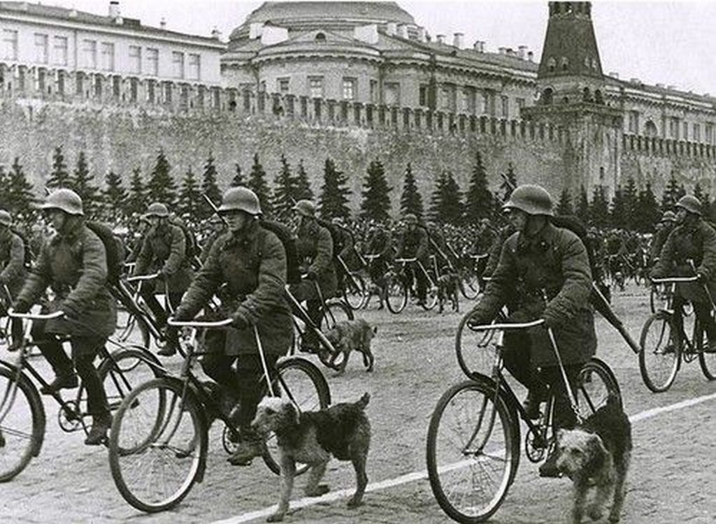 1938_soviet_bicycle_troops_with_war_dogs_on_parade_moscow_russia_1_may.jpg
