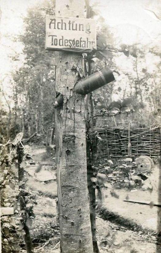 1917_korul_egy_faba_furodott_fel_nem_robbant_lovedek.jpg