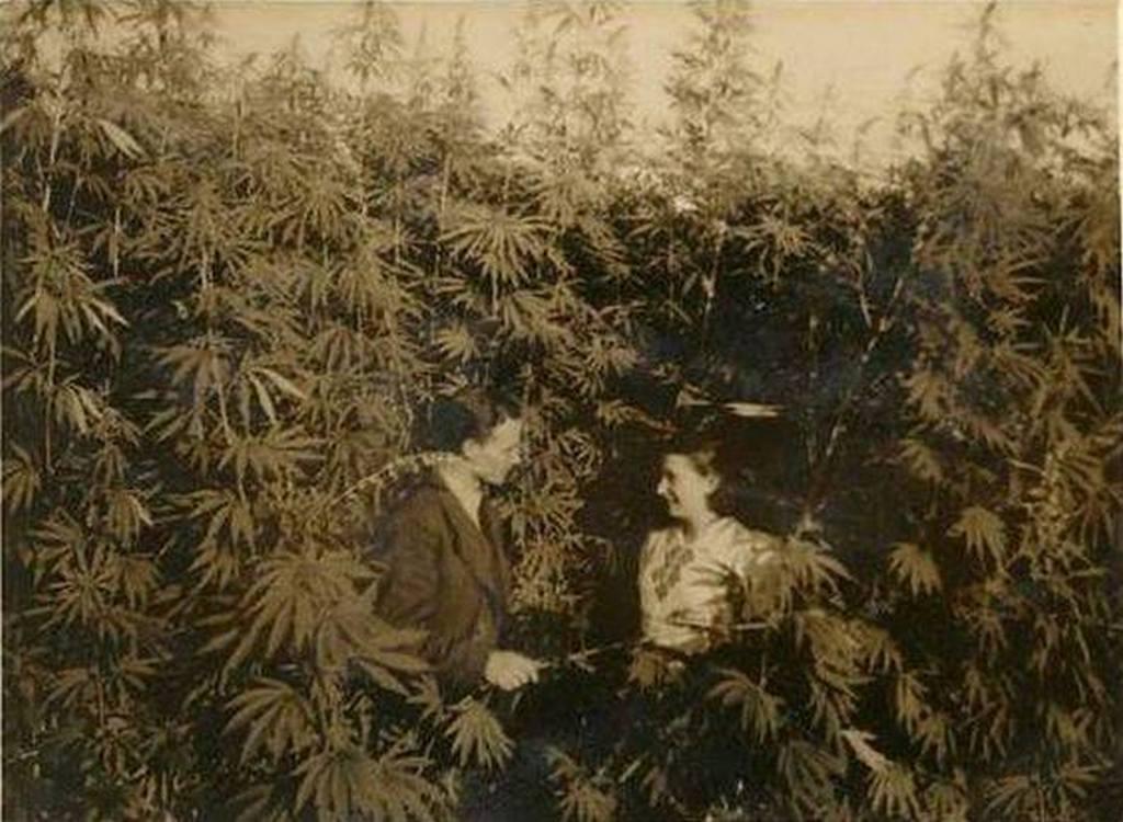 1967_ukrajna_biologiai_kutatouzem.jpeg