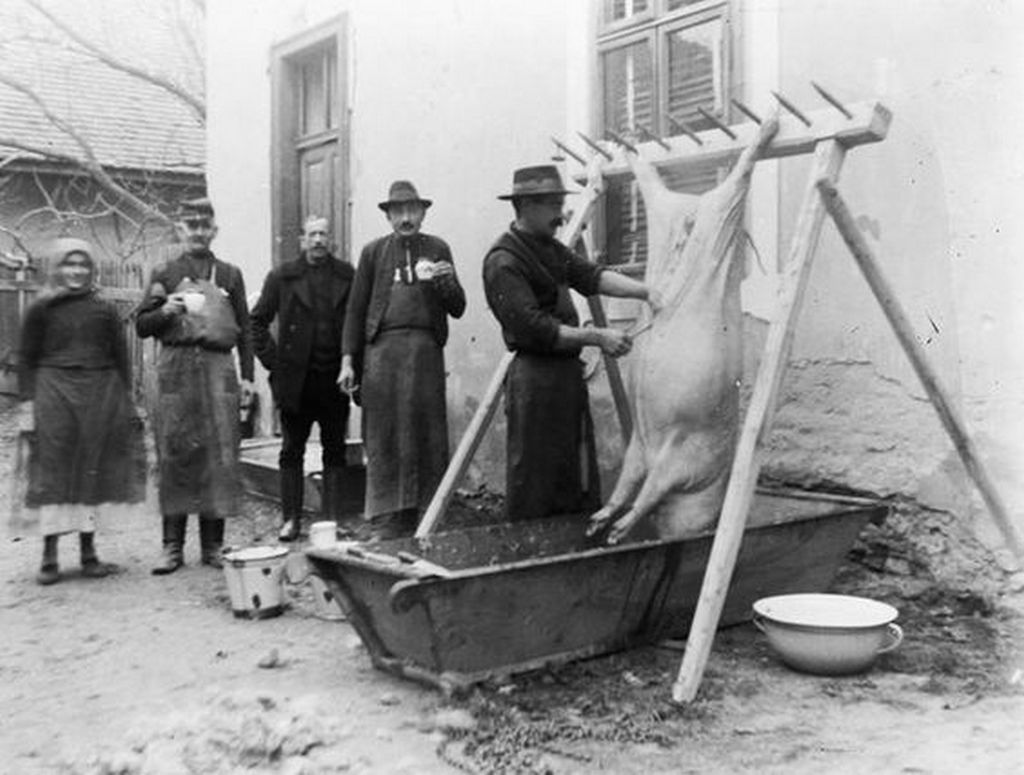 1925_disznovagas_solymaron.jpg