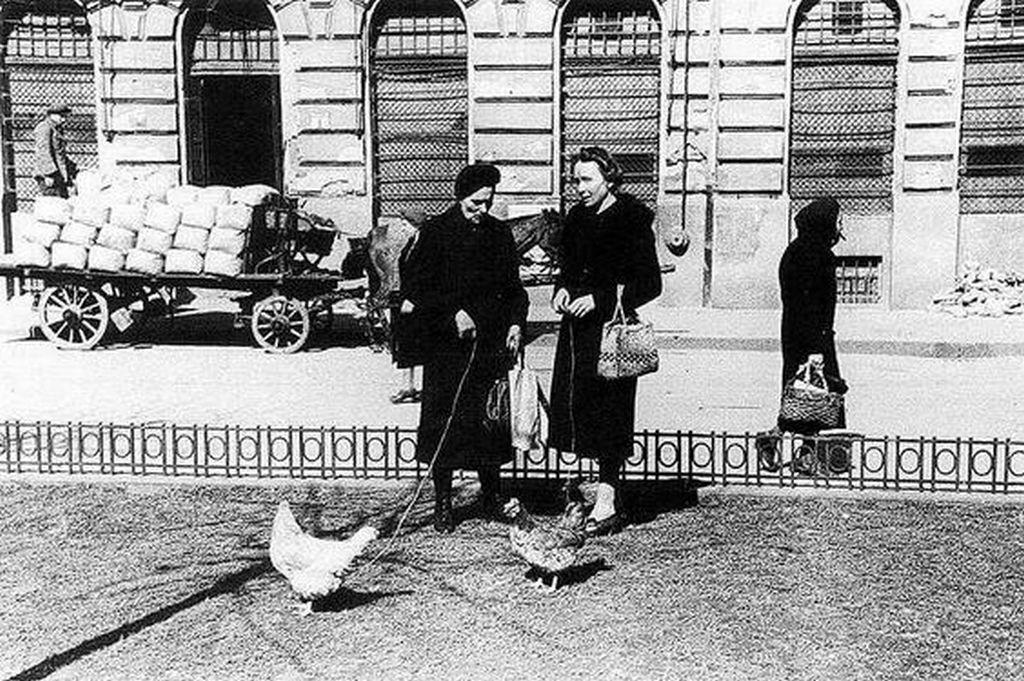 1946_haboru_utan_csirket_legelteto_haziasszonyok_pesten.jpg