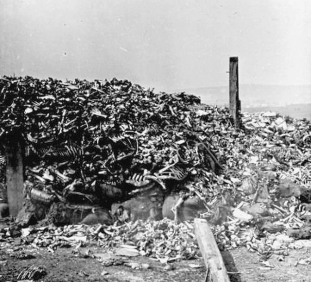 1916_a_pile_of_human_remains_during_or_after_the_battle_of_verdun_ww1.jpg