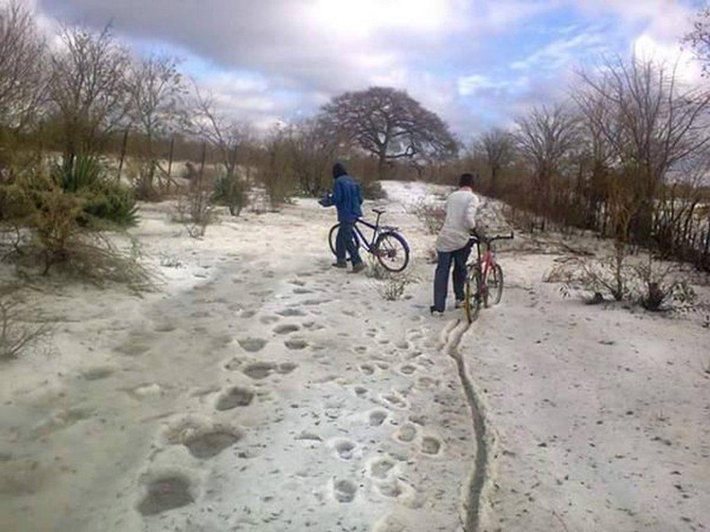 2016_majus_2_snow_zimbabe.jpg