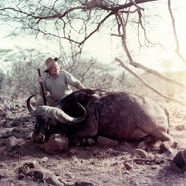 1953_american_novelist_ernest_hemingway_posing_with_a_cape_buffalo_on_a_visit_to_africa.jpg