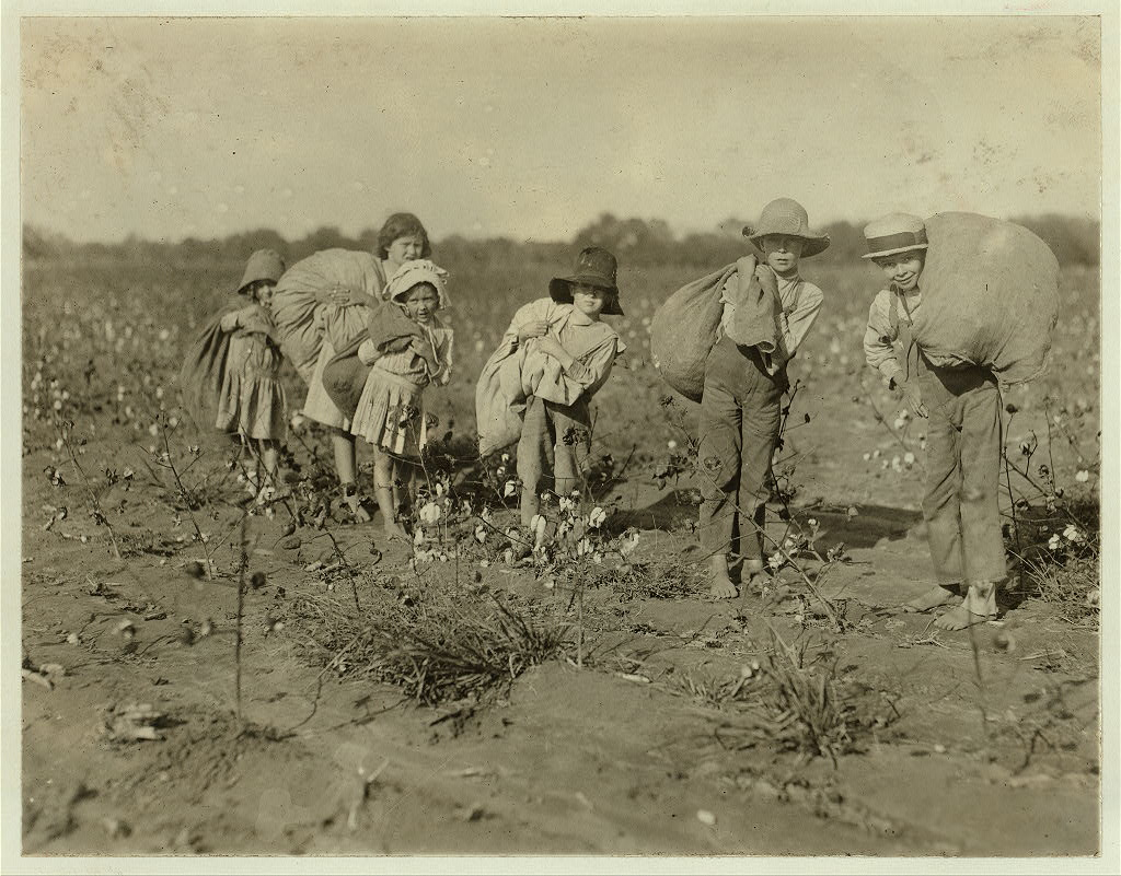 1913_group_of_children_ranging_in_age_from_five_to_eleven_picking_cotton_from_a_farm_in_bells_tx.jpg