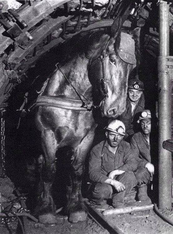 1970-es_evek_coalmine_in_ukraine.jpg