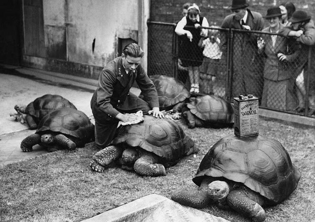1930-as_evek_londoni_alltakert.jpg