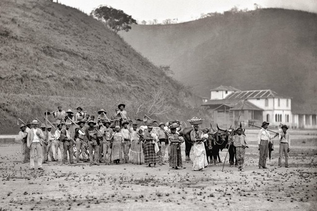 1885_slaves_from_a_coffe_plantation_in_brazil.jpg