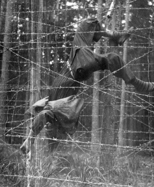1953_majus_miroslav_svaton_age_22_dead_on_a_electric_barbed_wire_fence_on_the_czechoslovakia-germany_border.jpg