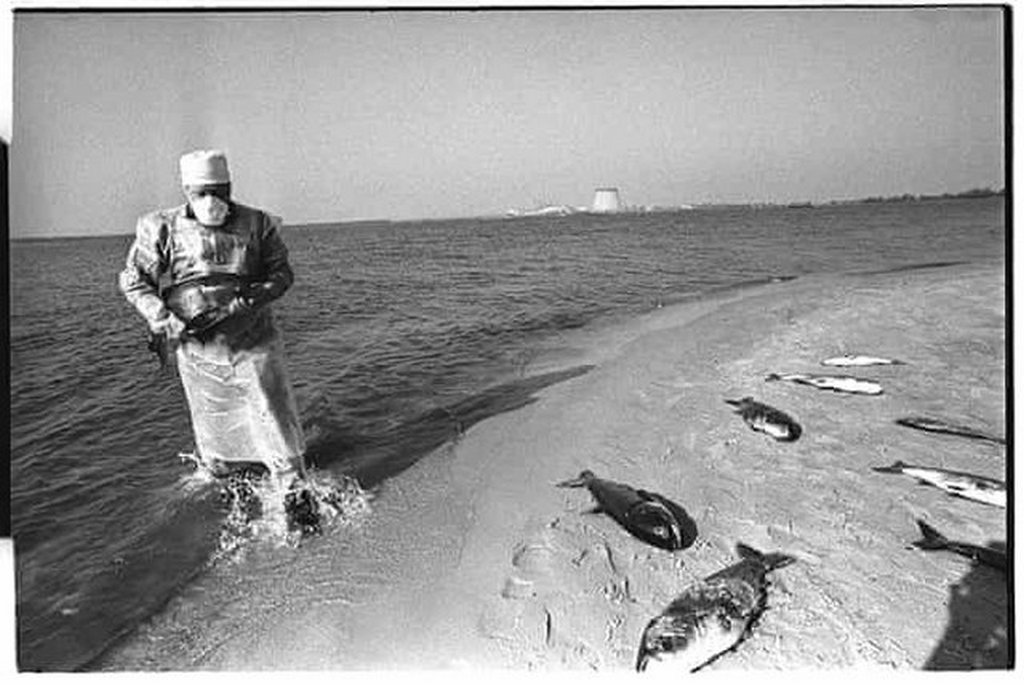 1986_dead_fish_are_collected_by_an_artificial_lake_within_the_chernobyl_site_that_was_used_to_cool_the_turbines_the_fish_which_died_from_exposure_to_radiation_are_abnormally_large_and_flabby.jpg