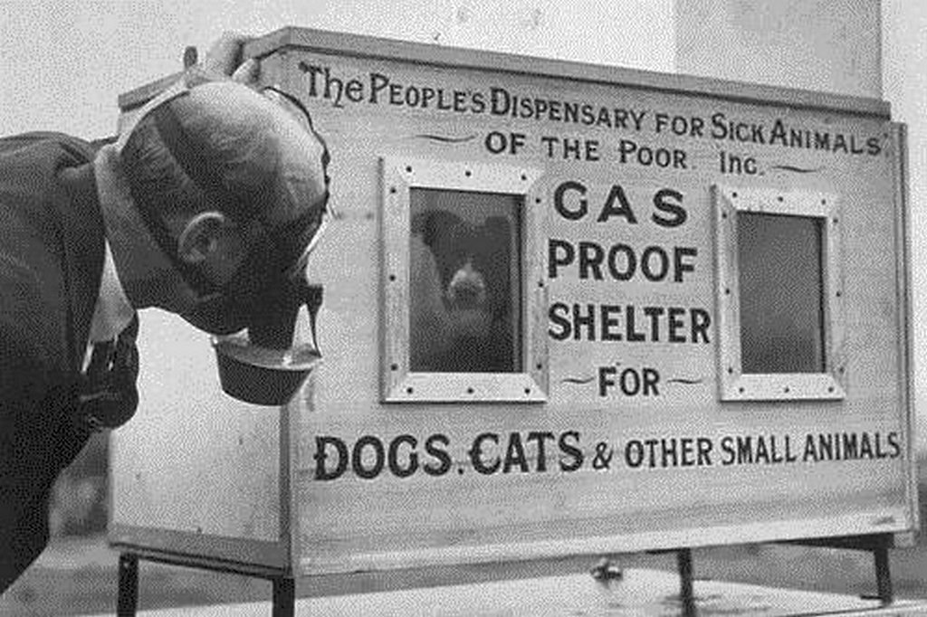 1940_a_dog_in_the_gas-proof_chamber_invented_by_c_h_gaunt_chief_technical_superintendent_of_the_people_s_dispensary_for_sick_animals.jpg