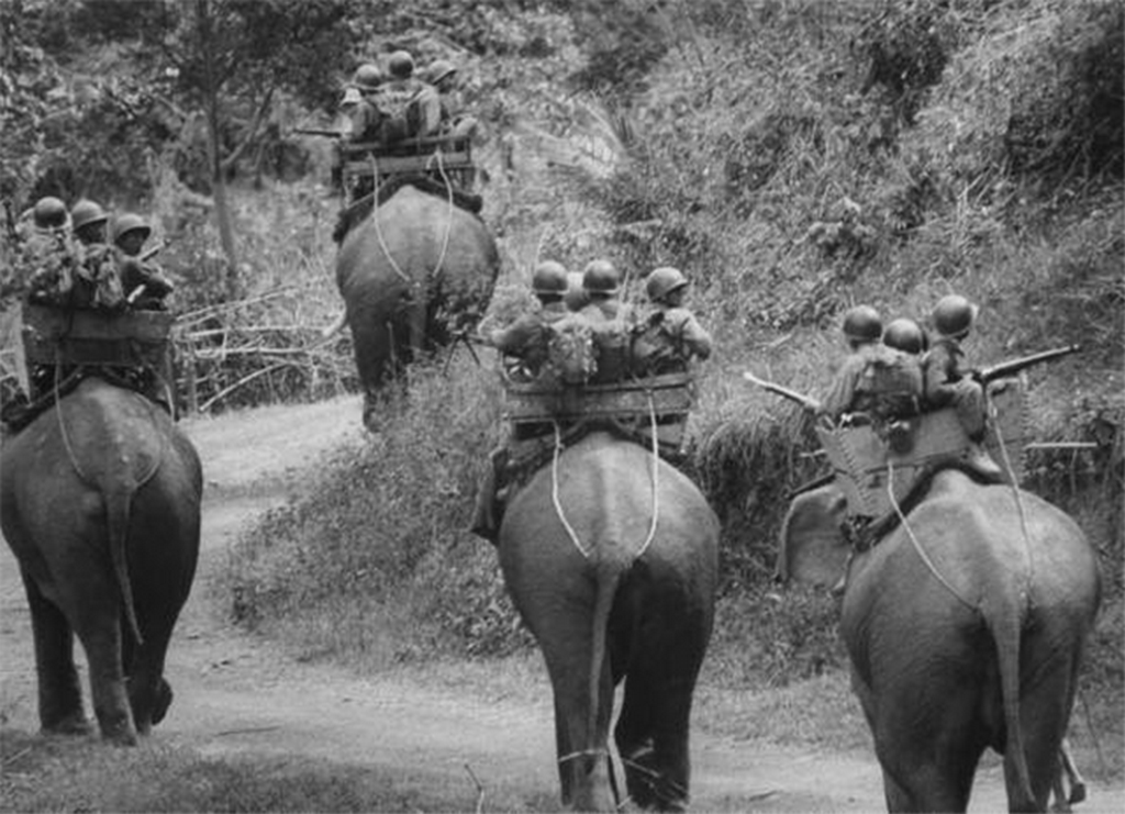 1962_south_vietnamese_war_elephants_on_patrol_in_the_central_highlands.png