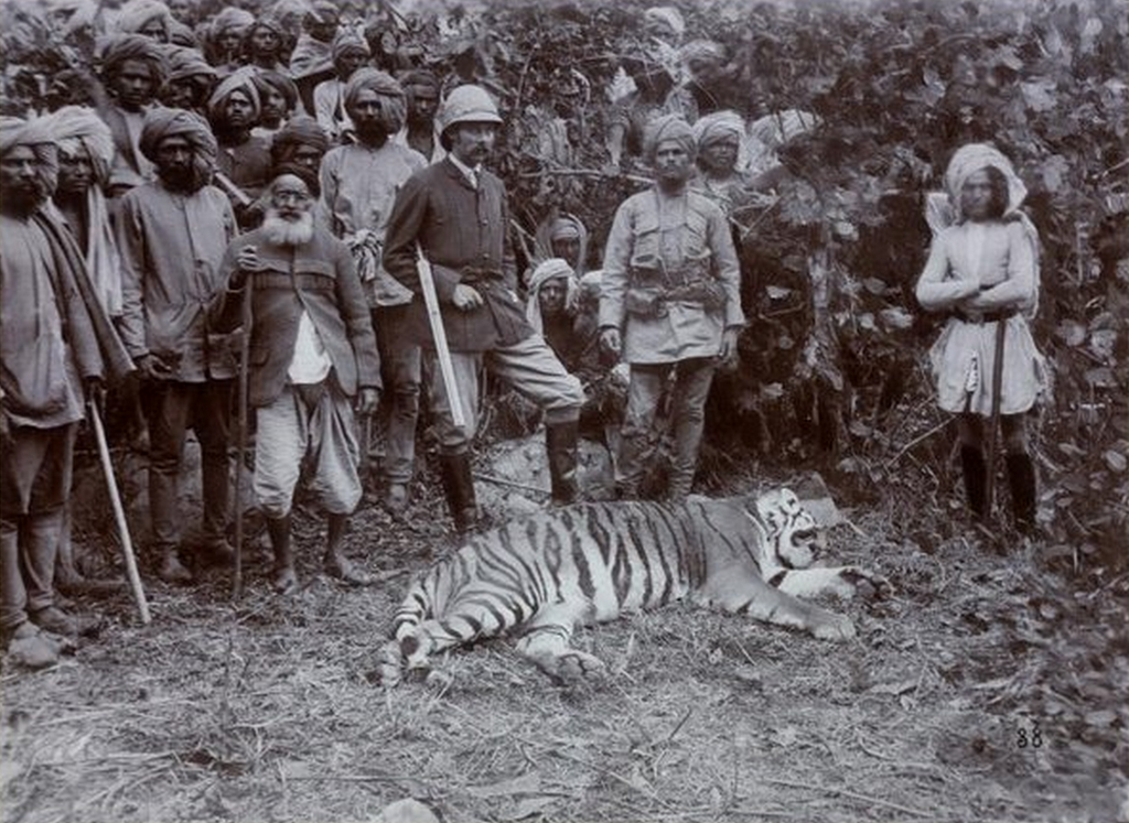 1893_franz_ferdinand_after_a_successful_tiger_hunt_during_his_visit_to_india_cr.png