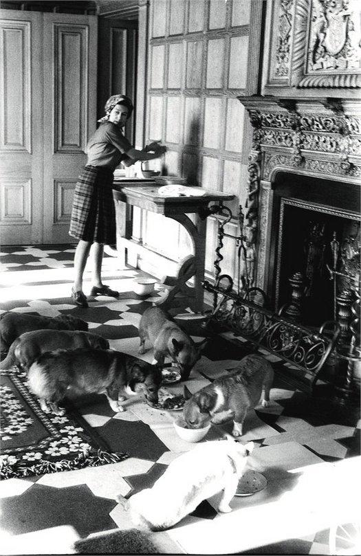 1976_the_queen_elizabeth_ii_feeding_her_corgis_at_balmoral_scotland.jpg