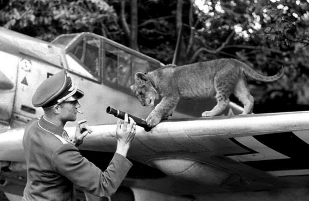 1941_german_ace_franz_von_werra_and_his_pet_lion_simba_on_the_wing_of_his_bf-109_e4.png