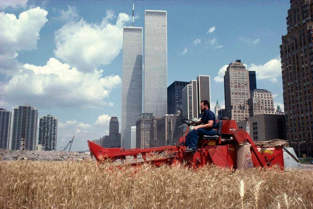 1982_wheat_field_in_manhattan_near_wtc.jpg