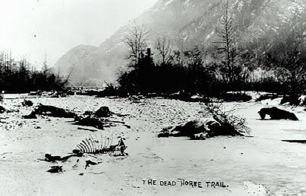 1890_white_pass_aka_dead_horse_trail_a_notoriously_tough_trail_in_alaska.jpg