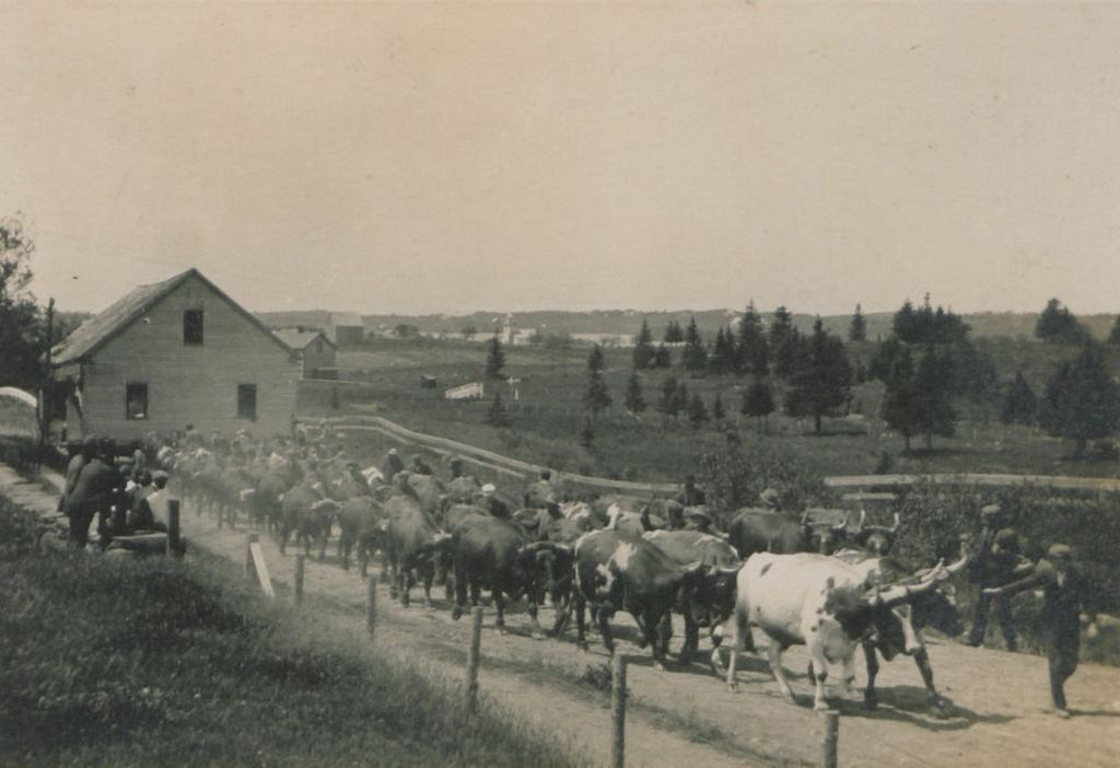 1913_transferring_real_estate_in_nova_scotia.jpg