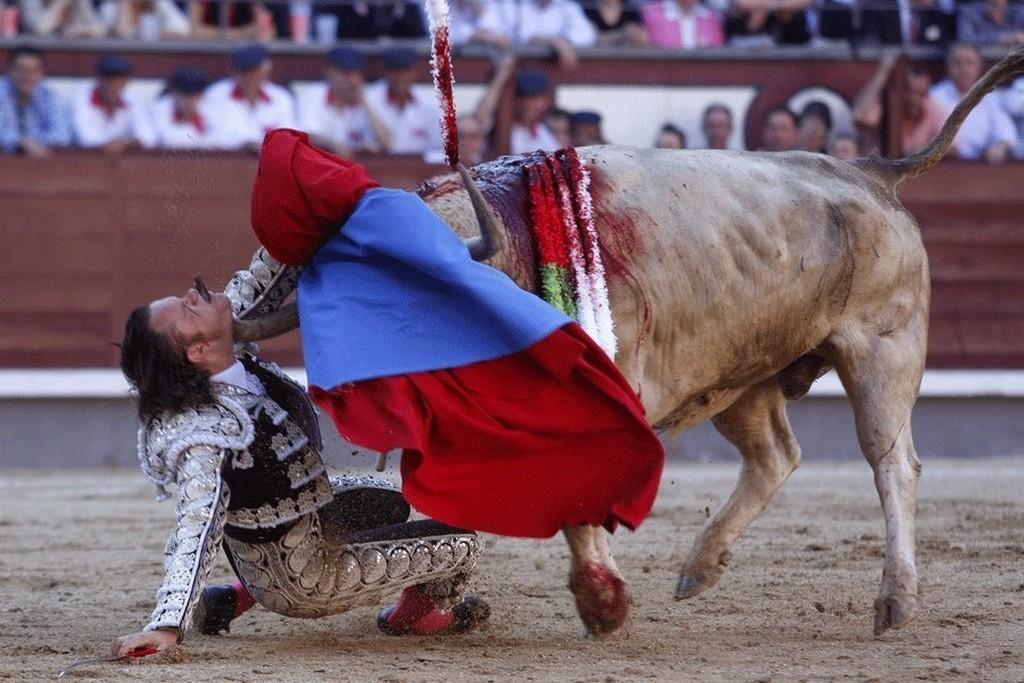 2010_san_isidro_festival_las_ventas_spanyolorszag_julio_aparicio_torreadort_egy_opiparo_nevu_530_kilos_bika_az_arenaban_feloklelte_apericio_tulelte_az_esetet.jpg