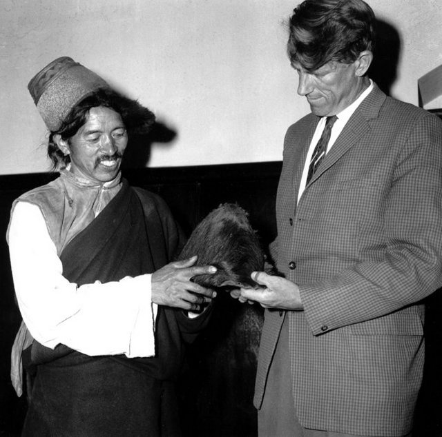 1960_new_zealander_sir_edmund_hillary_conquerer_of_mount_everest_and_elder_sherpa_is_pictured_in_calcutta_india_holding_the_hairy_scalp_which_according_to_himalayan_villagers_belonged_to_a_yeti.jpeg