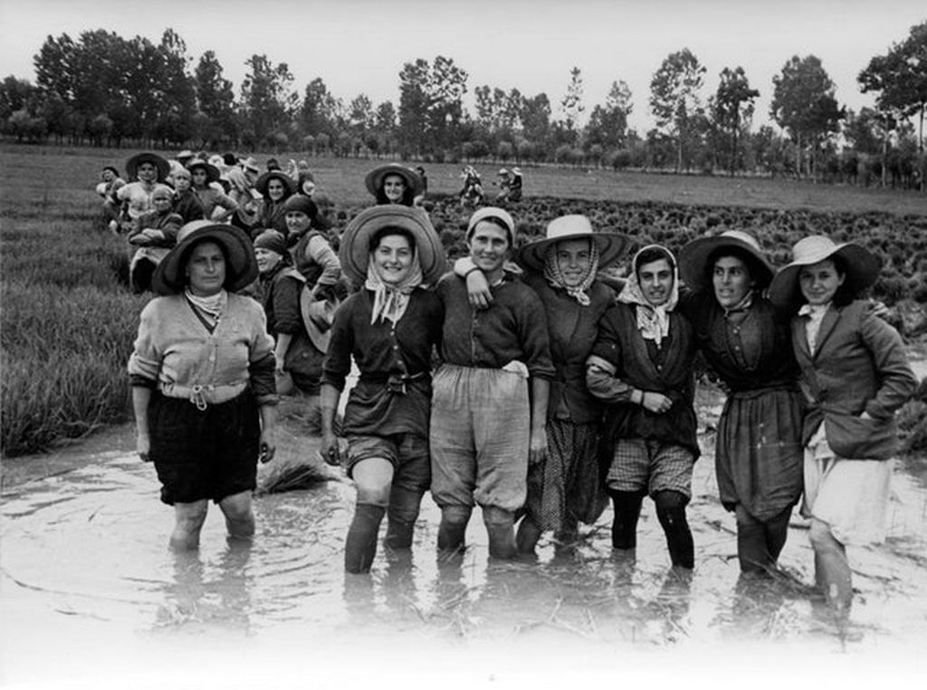 1948_rice_paddy_workers_in_the_rice_fields_near_modena_italy.jpg