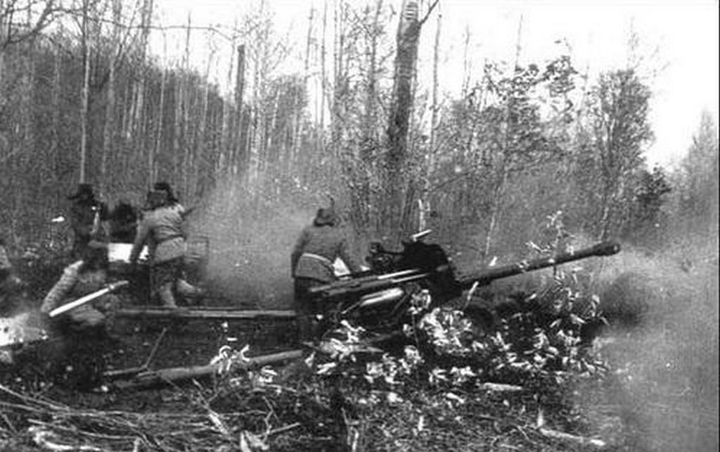 1969_chinese_artillery_firing_at_soviet_positions_sino-soviet_border_conflict.jpg