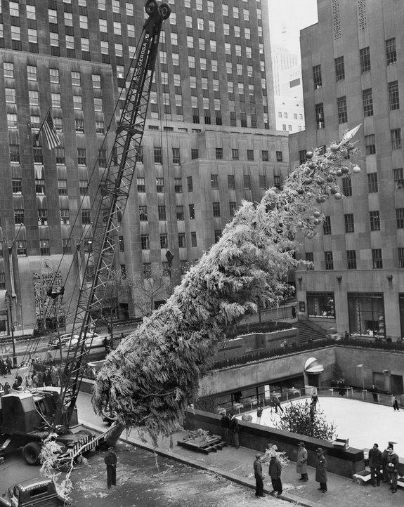 1949_the_annual_raising_of_the_christmas_tree_at_rockefeller_center.jpg